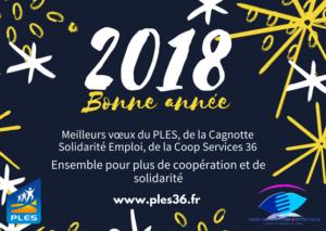 Bonne année 2018 - PLES (1)-2