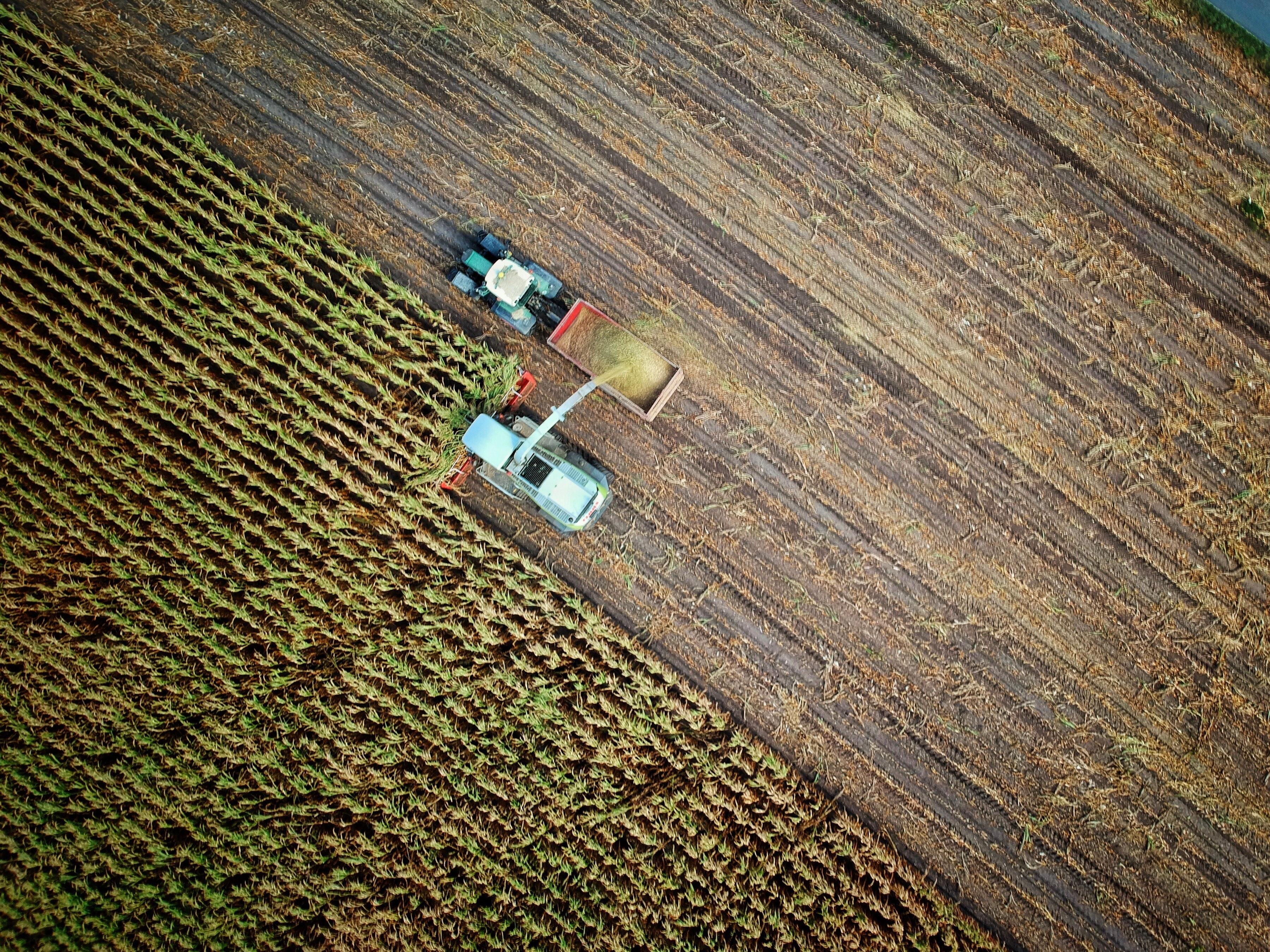 Fiche conseil numéro 3: «Les chantiers de travaux agricoles» – Covid19